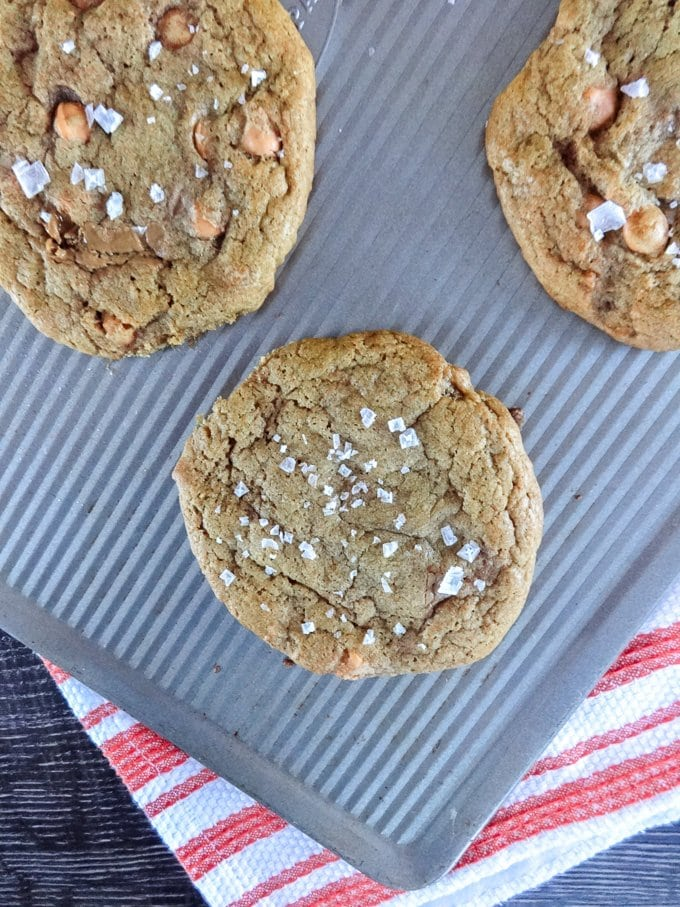 Cookie Butter Butterscotch Cookies - life changing! www.sweetcayenne.com