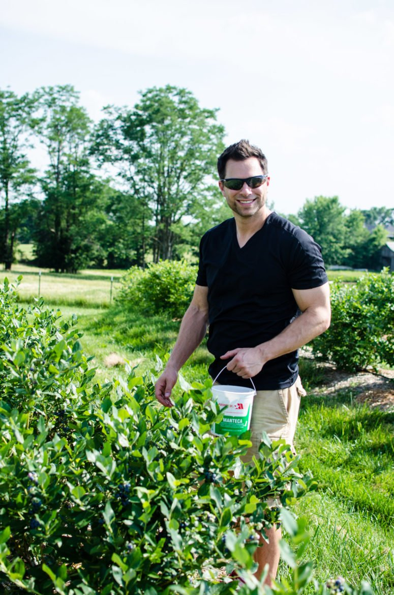A young man wearing sunglasses and picking blueberries from a bush.