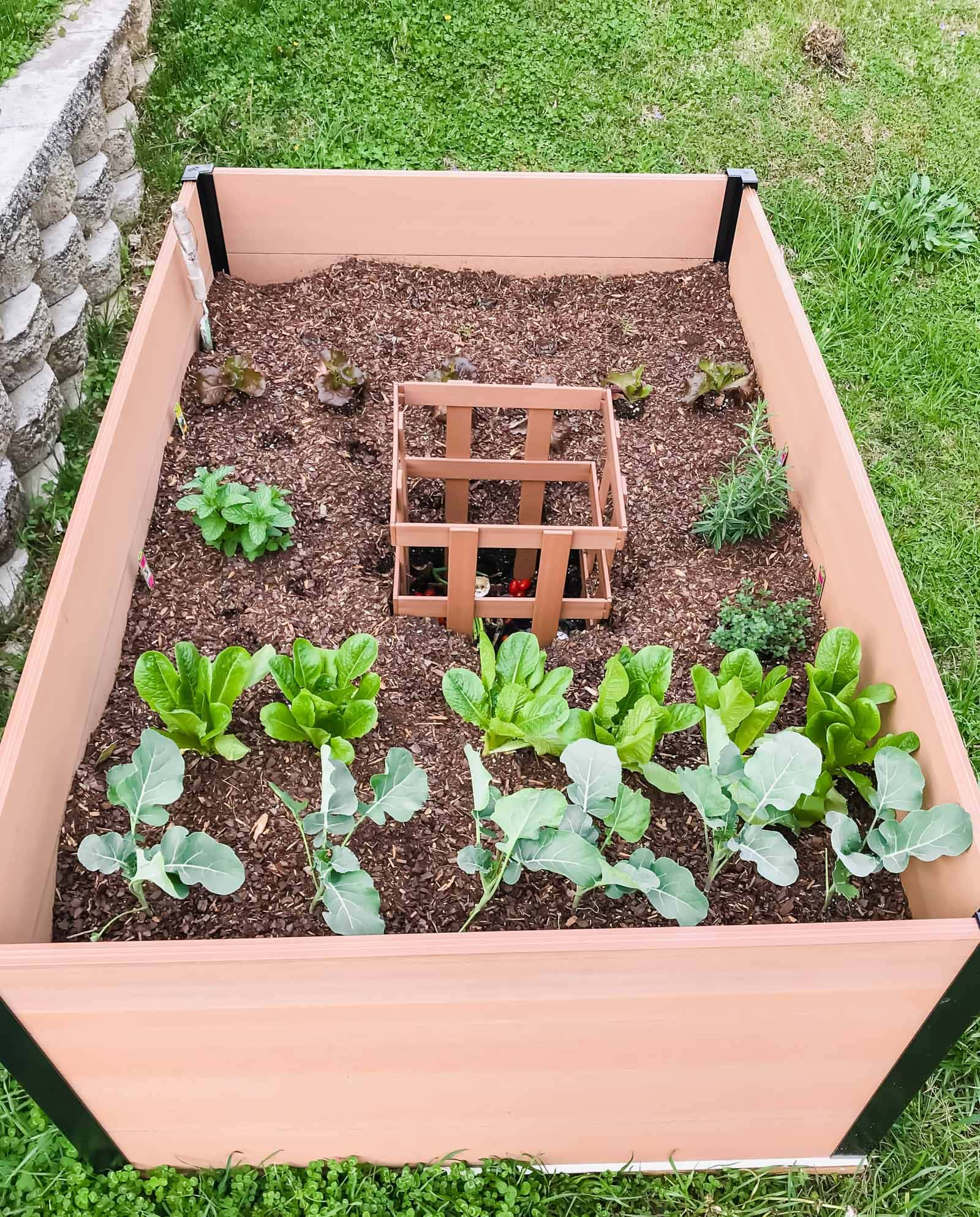 This guide to gardening for beginners features an easy-to-build raised garden bed from Costco! No tools are required to put the bed together and there is a compartment for making your own compost! #ad #sweetcayenne