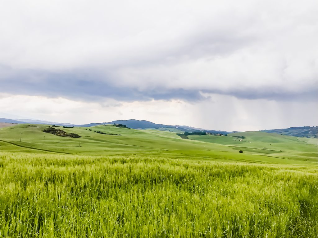 A photo of a field and rolling hills with an overcast sky in the Tuscan countryside.