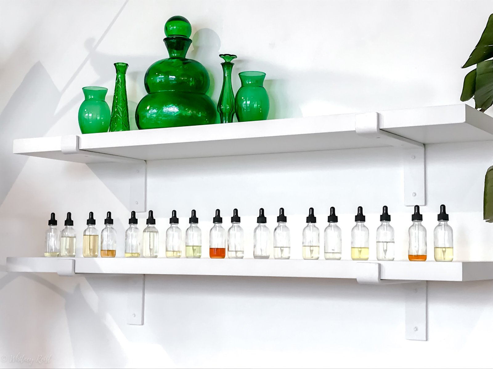 A white wall with a shelf of various facial oils and serums at Lemon Laine Oil Bar in Nashville, TN.