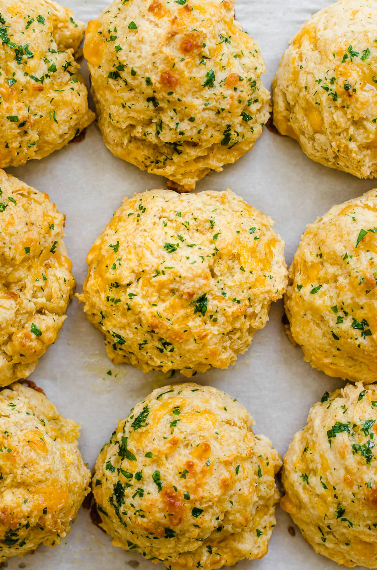 A close-up shot of cheddar bay biscuits on a baking sheet lined with parchment paper.